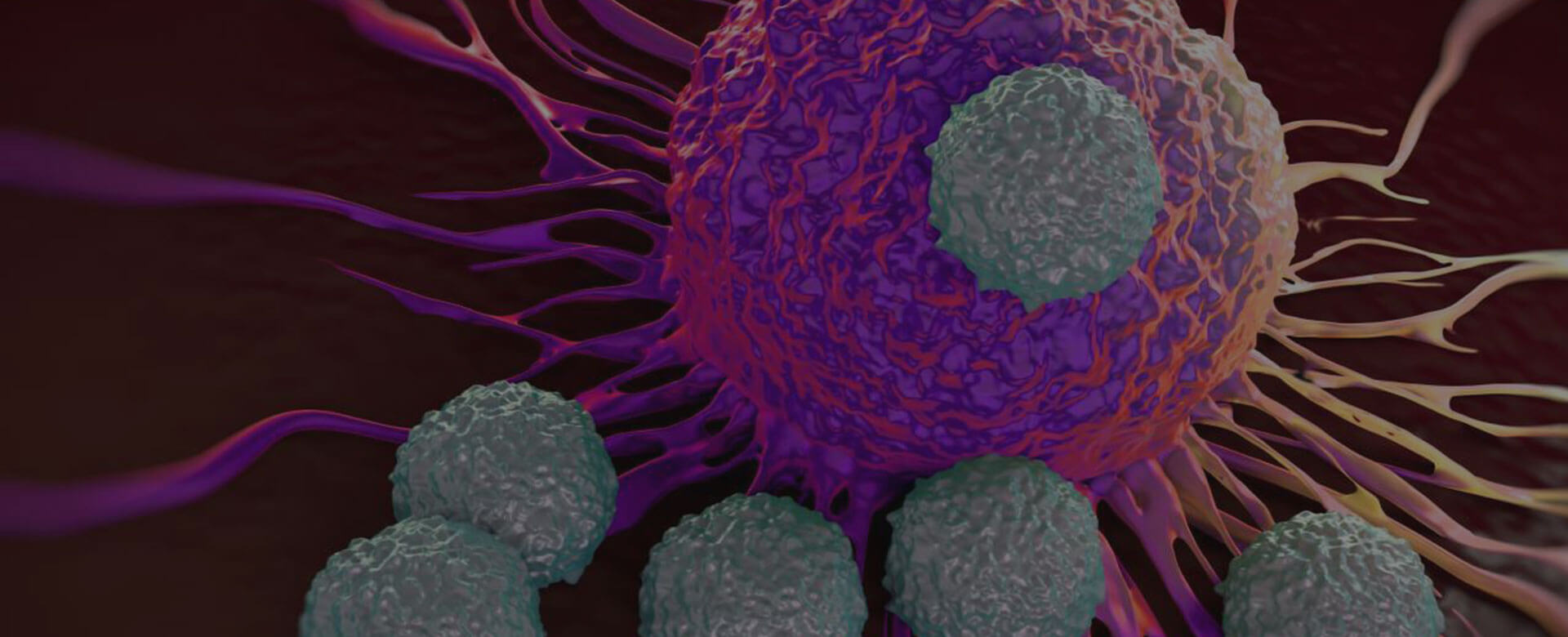 Le cellule NK del cordone ombelicale: nuova frontiera nelle terapie antitumorali