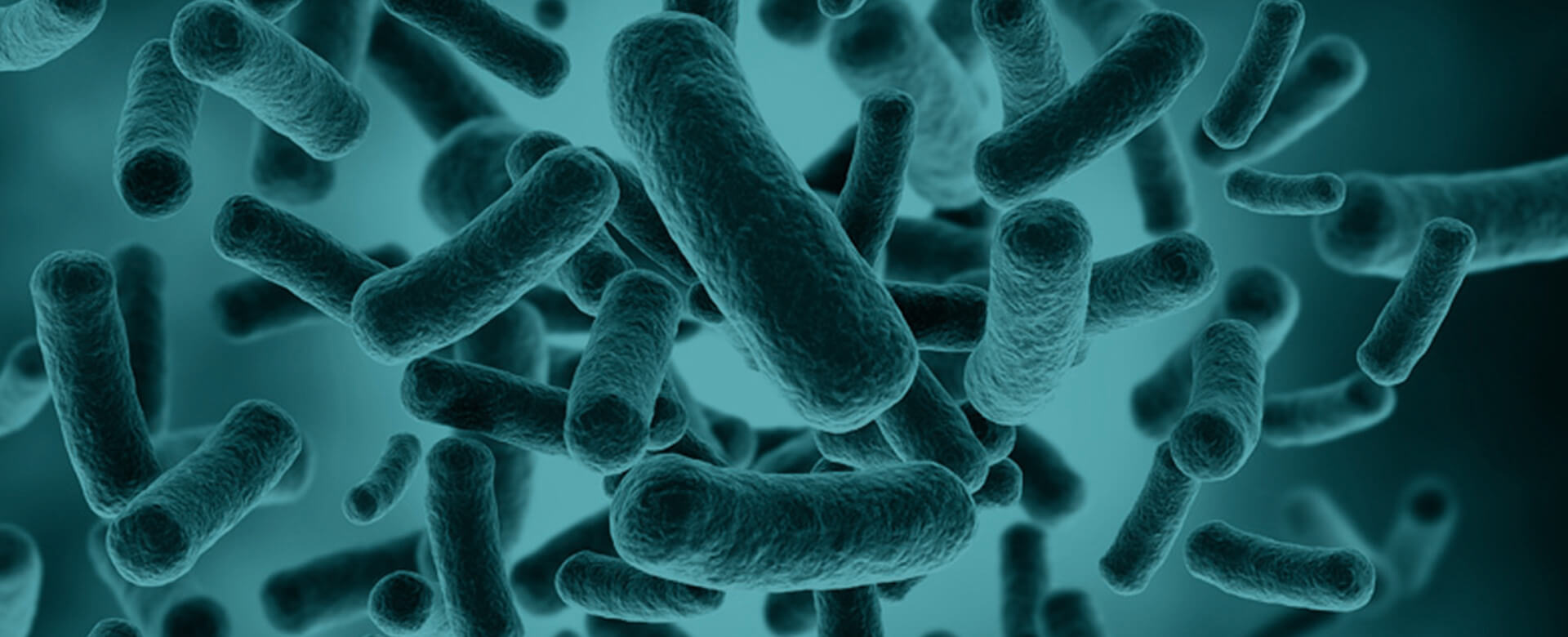 Microbiome analysis, a new tool against age-related diseases