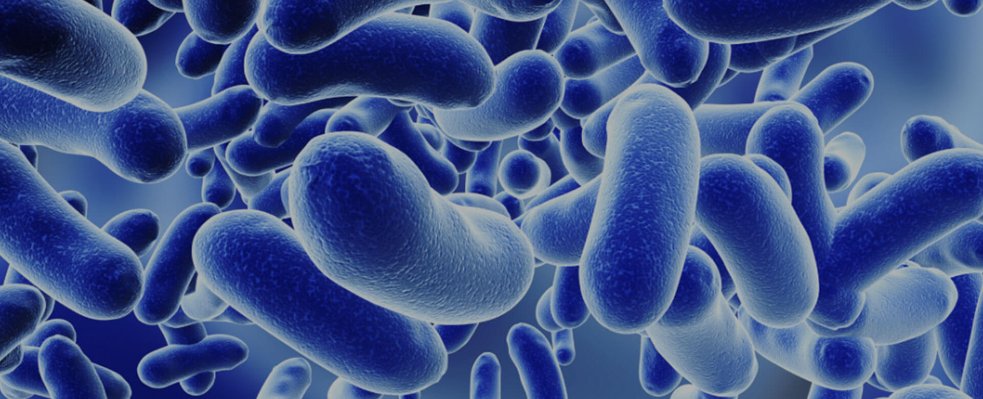 Toward a healthy immune system: the role of the microbiome
